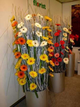 2008 041.jpg