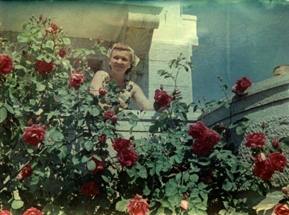 005_1957_roses_livadia.jpg