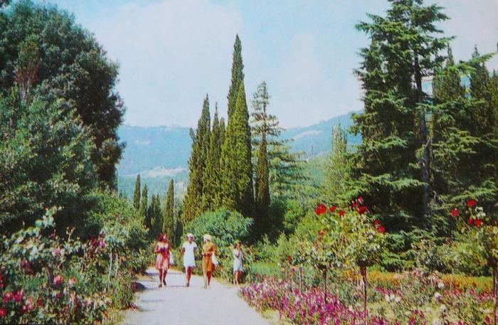 012_nikitsky_botanical_garden_1976.jpg