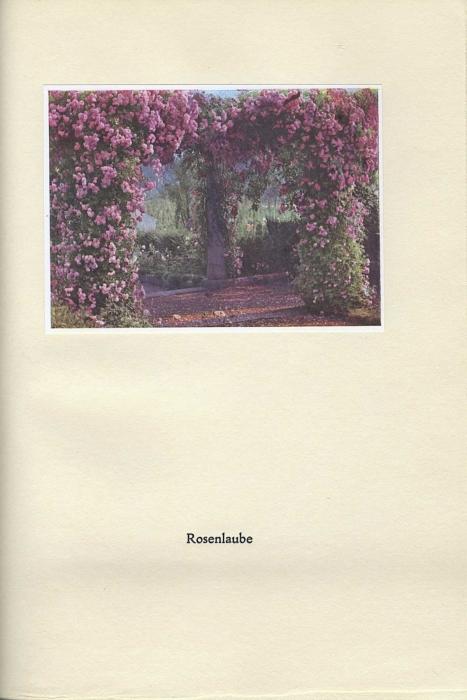 017_rosenhohe.jpg
