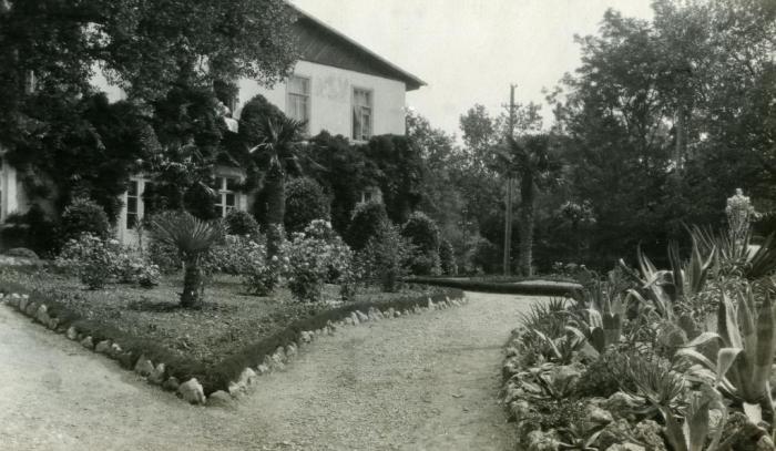 044_roses_of_nikitsky_garden_1930s.jpg