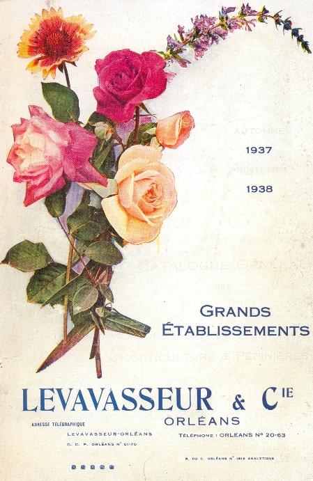 Levavasseur_001.jpg