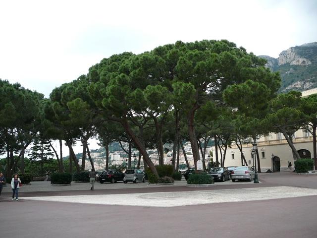 Monaco_3449.jpg