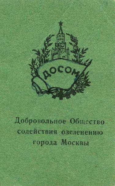 dosom-1.jpg