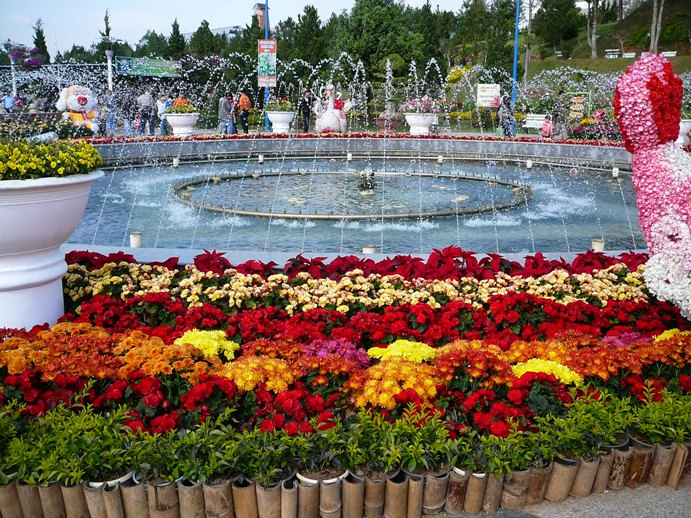 flowers_of_dalat_005.jpg