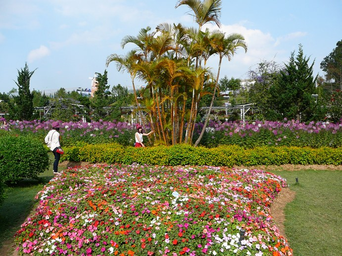flowers_of_dalat_007.jpg