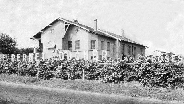 habitation-pernet-ducher.jpg