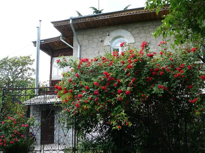 massandra_roses_002.jpg