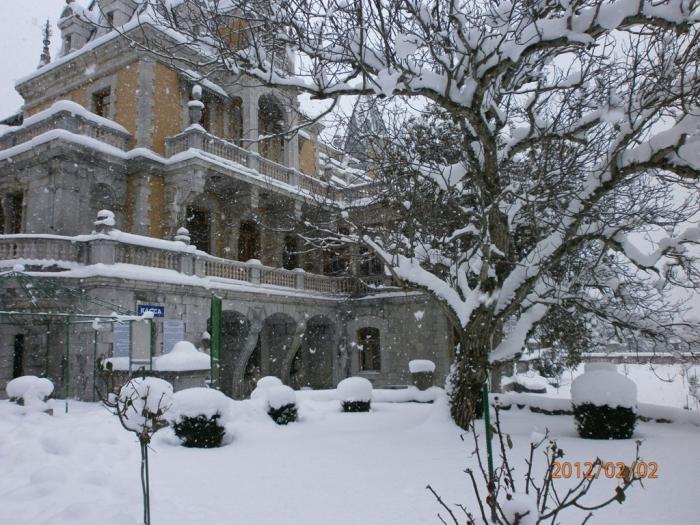 massandra_winter_2012.jpg