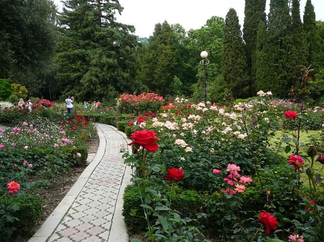 nikitsky_garden_roses_002.jpg