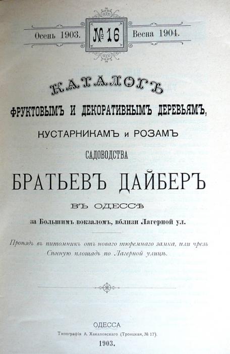 p1260654.jpg