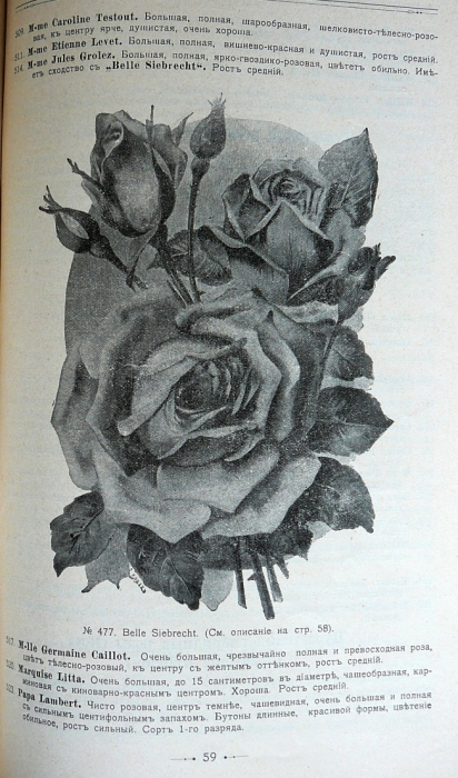 p1260694.jpg