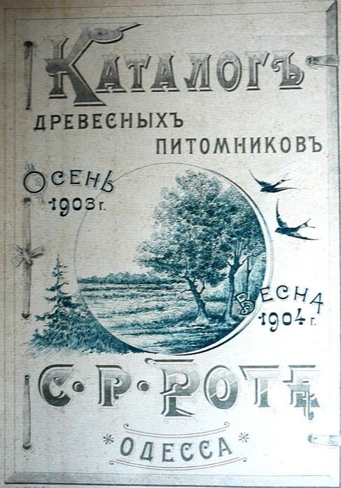p1260734.jpg