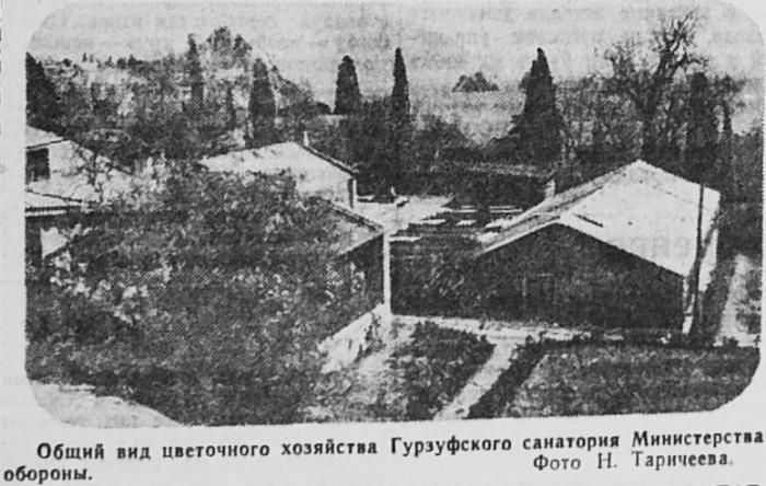 006_gurzuf_1958.jpg