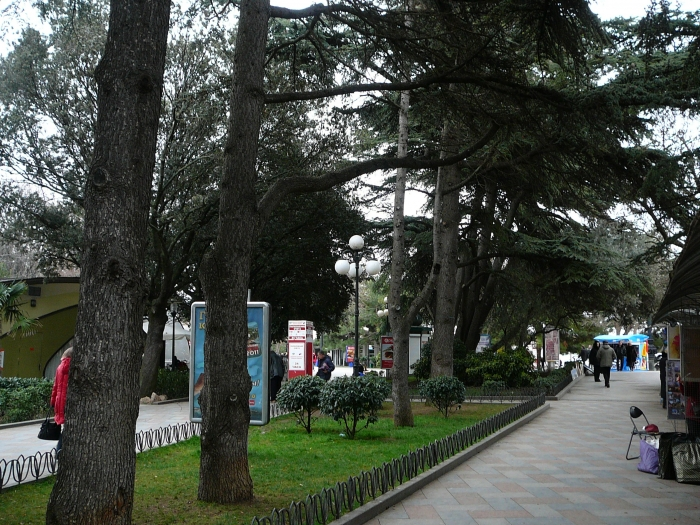 p1720027.jpg