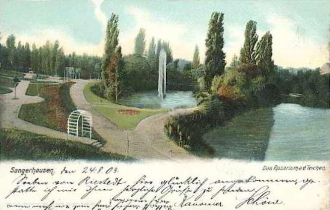 rosarium_europa_004_1903.jpg