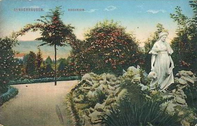 rosarium_europa_007_1914.jpg
