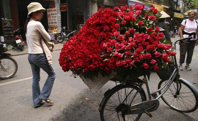 roses_of_vietnam.jpg