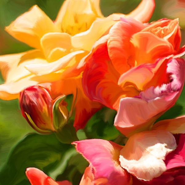 sunshine-roses-sarah-kathleen-peck.jpg