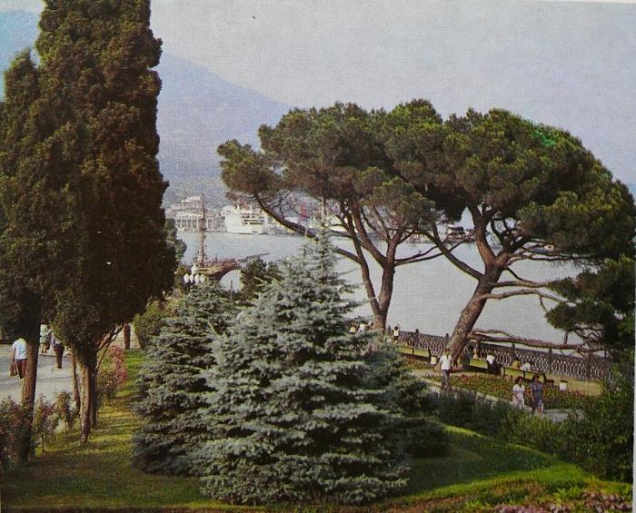 yalta_nab._1978_1.jpg