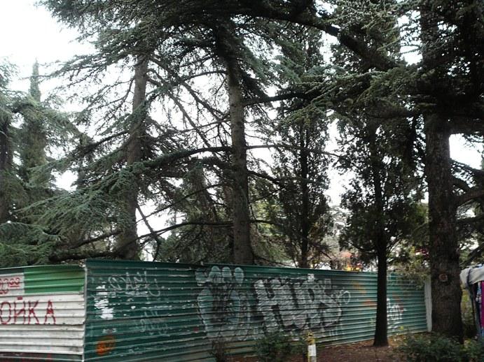 yalta_square_2012_002.jpg